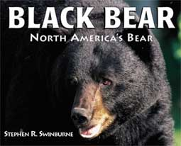 Black Bear - North America's Bear cover