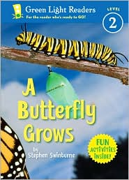 A Butterfly Grows cover