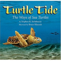 Turtle Tide cover