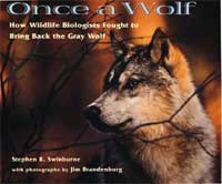 Once a Wolf cover