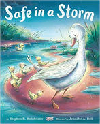 Safe in a Storm Book Cover